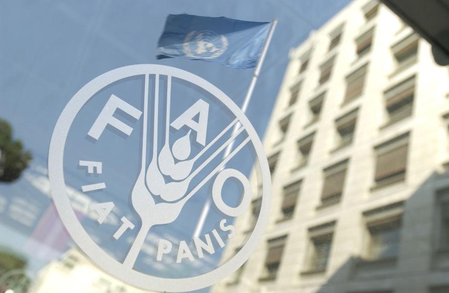 La FAO (Organización de las Naciones Unidas para la Agricultura y la Alimentación) le entrega al presidente Maduro un reconocimiento.
