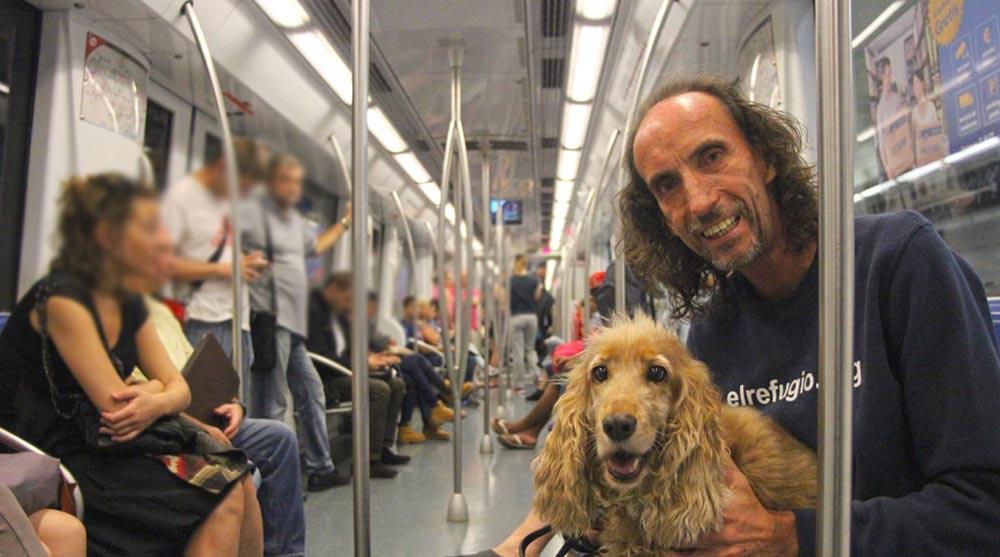 Perros-metro-de-Madrid